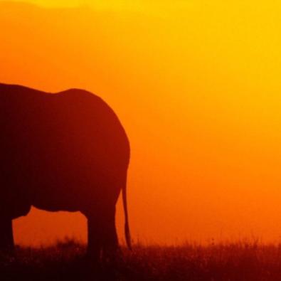 oferta-viaje-kenia-accent-agencia-de-viajes-valencia
